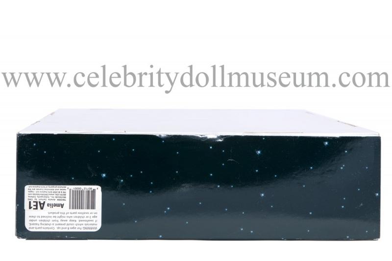 Amelia Earhart Doll Box